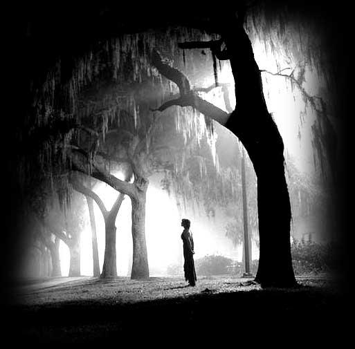 im_25_alone